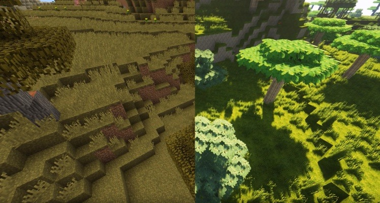 Graphics Comparation 3